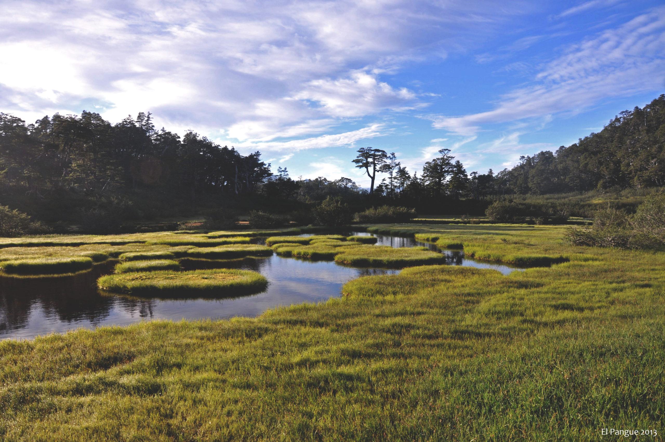 Sendero Laguna de los Pumas